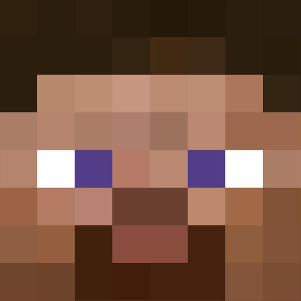 Steve face